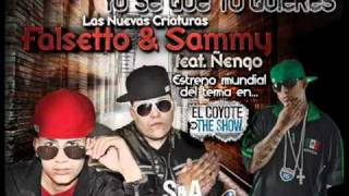 Yo Se Que Tu Quieres - Ñengo Flow Ft Falsetto & Sammy ►NEW ® Reggaeton 2011◄