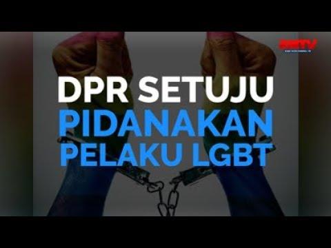 DPR Setuju Pidanakan Pelaku LGBT