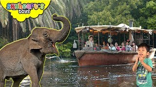 There are so many elephants in our jungle river cruise boat ride in Disneyland Adventureland! As well as spiders, tribesmen, crocodiles, hippo, rhinoceros, monkeys, gorillas, zebras, giraffes and many more! They are splashing water on us using their trunks. A bit scary part are the amazonian tribesmen shooting bamboos and the steam / fire river.This zoo safari boat ride can be found in Disneyland Hong Kong.[CLICK HERE] Subscribe to our channel for more fun and toyshttp://youtube.com/c/SkyheartsToysChannel?sub_confirmation=1