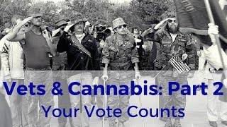 Let's Elect Leaders Who'll Give Veterans Access to Marijuana Medicine by Marijuana Straight Talk