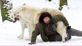 Beautiful Video Of A Woman Cuddling With Wolves