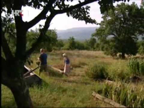 Permakultura u praksi - prva priča (Motovun)