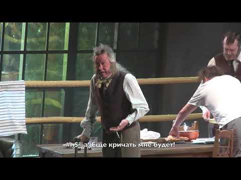 Что на самом деле произошло в Самаре с Михаилом Ефремовым (видео)
