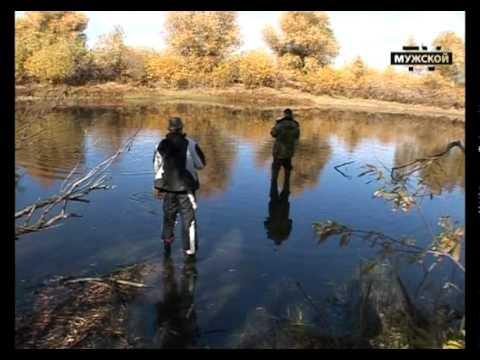 Рыбалка на Волге: Щука