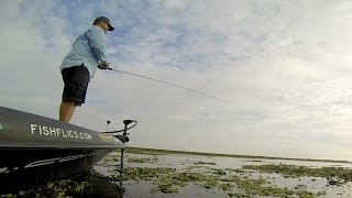 GoPro: Bass Fishing With Shaye Baker