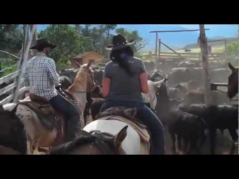 Séjour en ranch de travail au Montana avec Cheval d'Aventure