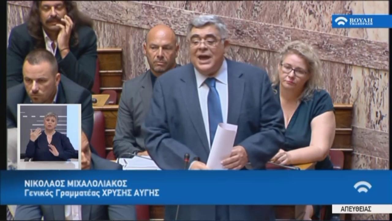 Ν.Μιχαλολιάκος(ΓΓ.ΧΑ)(Ενημέρωση για το Κυπριακό)(11/07/2017)