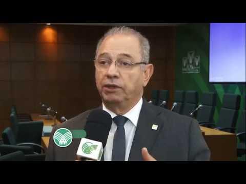Sistema Brasileiro de Classificação de Carcaças de Bovinos está prestes a ser lançado