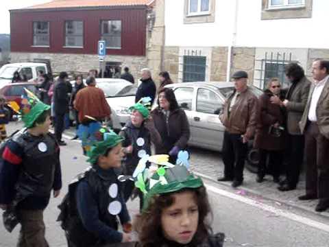 Biodiversidade foi o tema do desfile de carnaval em Oliveira do Hospital.MPG