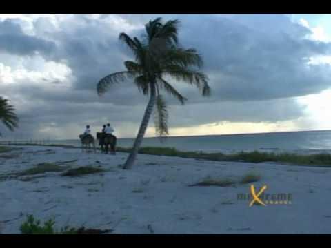 Holbox Horse Back Riding - Villas Delfines