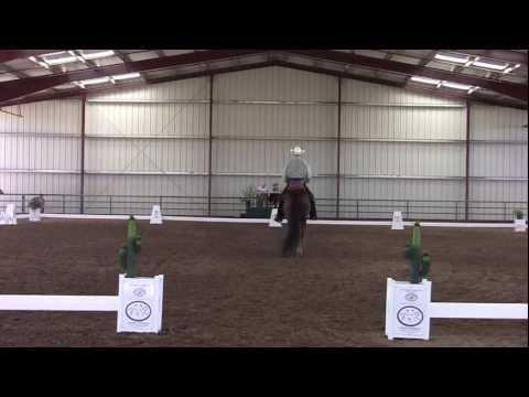 Cowboy Dressage Walk Jog Test # 2  Garn Walker