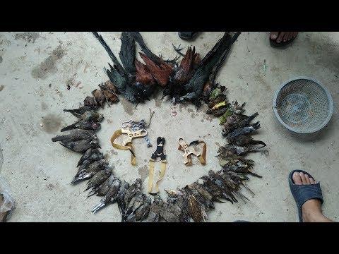 bắn chim bằng ná cao su - Thời lượng: 3:17.