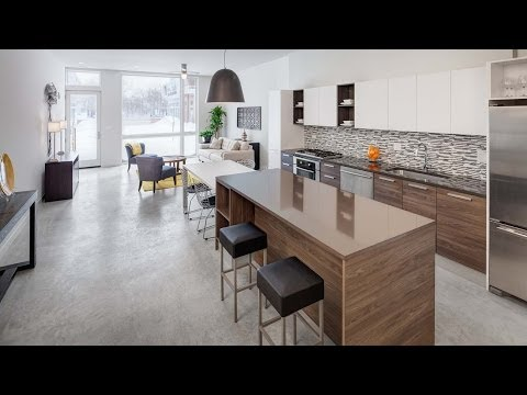 A video visit to the Backyard Andersonville rowhomes