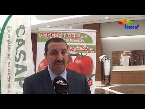 عنابة : يوم اعلامي لتطوير شعبة الطماطم و الدخول في عالم التصدير
