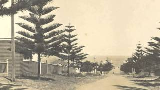 Cheryl explains why Cottesloe has so many Norfolk Island Pines and how they became the symbol of Cottesloe.