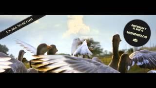 7 - Oques Grasses - Ritme salvador - Un dia no sé com
