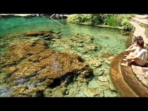 Swimming the day away at Ichetucknee Springs!