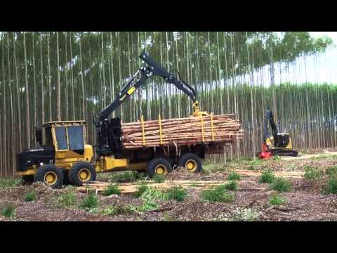 Harvester H845C and Forwarder 1075B Tigercat