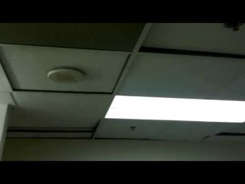 How would you react if the bathroom ceiling at work did this? (VIDEO)