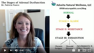 2. What is adrenal fatigue?