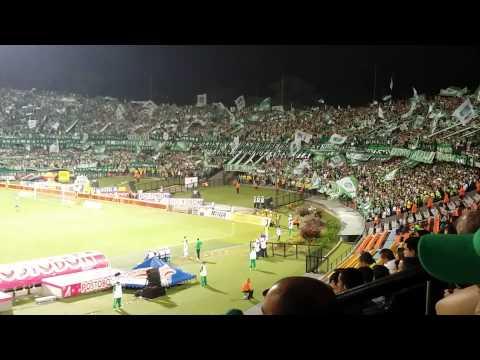 Video - Te quiero como a mi vieja - Los Del Sur - Los del Sur - Atlético Nacional - Colombia - América del Sur