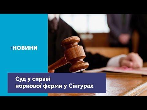 Відбувся суд у справі норкової ферми у Сінгурах