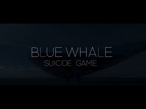 BLUEWHALE SUCIDE GAME | TSK