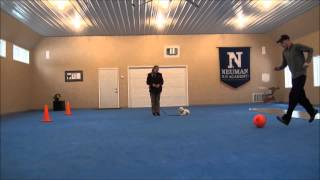 Jack (Poodle) Boot Camp Dog Training Video