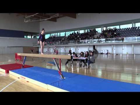 Gimnasia Artística Fem 2ª Fase JDN Barra (3)
