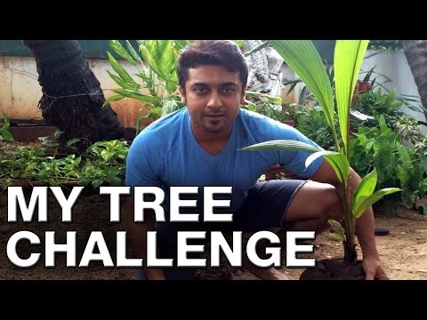 Suriya Accepts My Tree Challenge from Mammootty