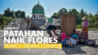 Video Patahan Naik Flores, Pemicu Rentetan Gempa Lombok MP3, 3GP, MP4, WEBM, AVI, FLV Maret 2019