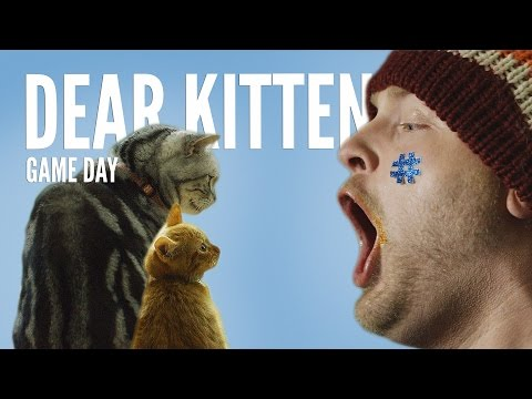 Cat Explains The Superbowl In This Hilarious Video! Who's getting ready?