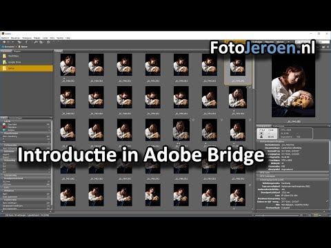 Introductie in Adobe Bridge (Photoshop)