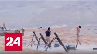 Губернатор Хомса: Сирийские войска покинули Пальмиру