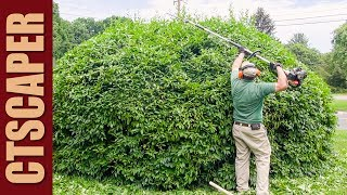 The Echo PAS or Echo Pro Attachment Series being used to trim an overgrown forsythia hedge.  The PAS system makes quick work of an unruly overgrown shrub.Felco Number 2: http://amzn.to/2jWOnJ5Felco F600 Pruning Saw: http://amzn.to/2q34p7uJohn's Edging Tool: http://amzn.to/2kizi5zJohn's 5 Tine Manure Fork for Mulching: http://amzn.to/2jxpVBLLesche Soil Knife: http://amzn.to/2pxuSgHTools and supplies: http://astore.amazon.com/ldullc-20Landscaping Website: http://www.landdesigns.com/Chainsaw and Wood Splitting website: http://sawsandsplitters.com/Topics included in this video:Echo PAS, Echo Pro Attachment Series, Stihl Kombi System, Multi-Task Tools, Maxtreme Tools, Weedwacker, Hedge Trimmer, Bed Edger, Power Broom