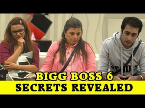 Delnaaz, Rajeev, Aashka's DARK SECRETS out on Bigg
