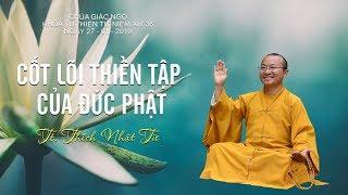 Cốt lõi thiền tập của đức Phật - TT. Thích Nhật Từ