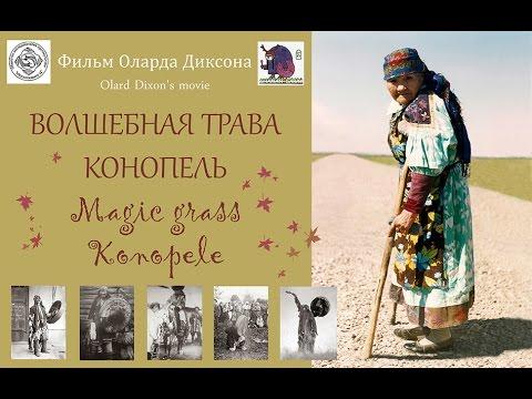 ВОЛШЕБНАЯ ТРАВА КОНОПЕЛЬ. 2016. Фильм о хакасских шаманах