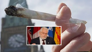 Lawyer John Conroy on Federal Court Decision - What this means to patients. by Urban Grower