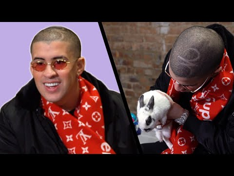 Video Bad Bunny Gets Surprised With Bunnies (While Answering Fan Questions) download in MP3, 3GP, MP4, WEBM, AVI, FLV January 2017