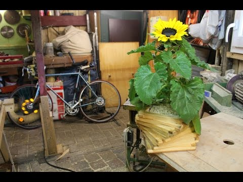 Blumentopf aus Palettenholz bauen