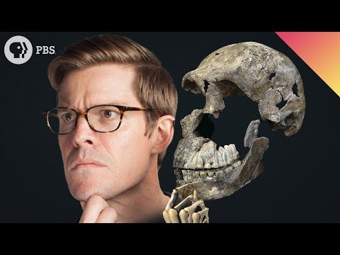 The Lost Face: A New Species of Humans Found