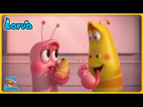 The Larva Girls Compilation🍟 Fun Clips from Animation LARVA 🥞Larva Official 🥟 Cartoon Comedy 2020