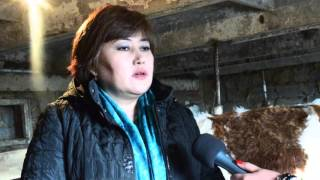 Как жители г.Усть- Каменогорск становятся фермерами