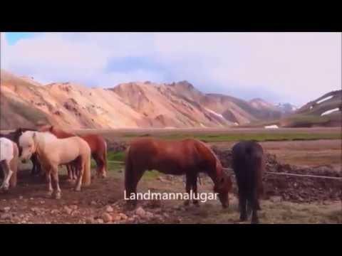 Landmannalaugar et le Cercle d'or
