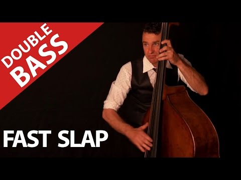 contrabass - Stephane Barral is a brilliant Musician in 