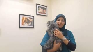 Video Dr. Noura's message MP3, 3GP, MP4, WEBM, AVI, FLV Februari 2018