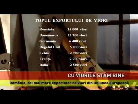 România, fruntașă la exportul de viori