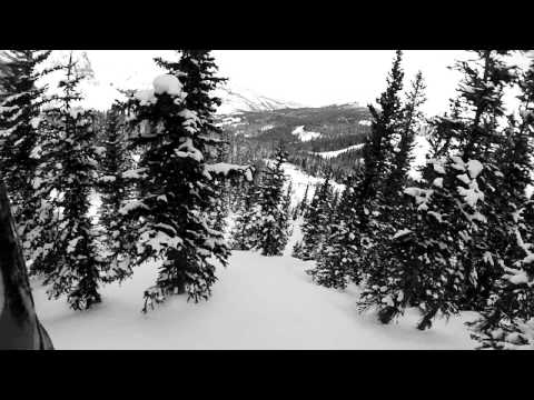 In Search of Snow - Bentley