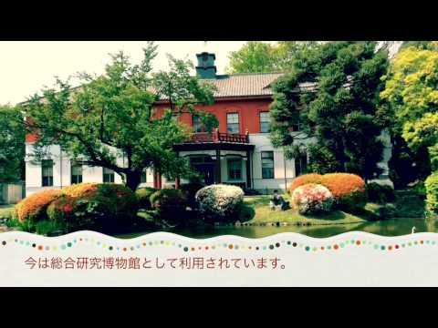 部門賞緑の癒しイメージ